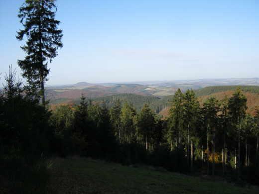 Waldbegang Gemeinde Leimbach