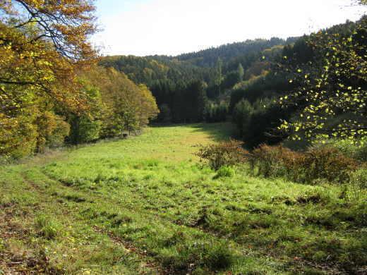 Jagdgenossenschaften Gilgenbach und Leimbach