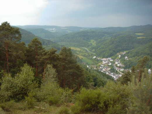 Brennholz aus dem Gemeindewald Leimbach